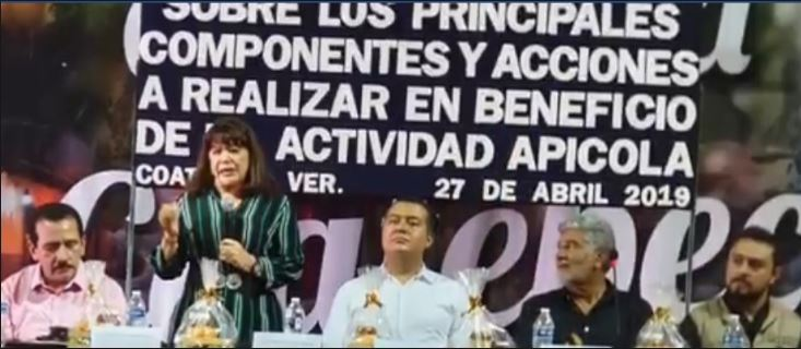 Apicultores de Coatepec podrán ser proveedores de Segalmex: Diputada Carmen Mora