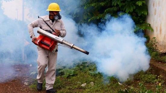 En una semana, más de 800 nuevos casos de dengue en Veracruz