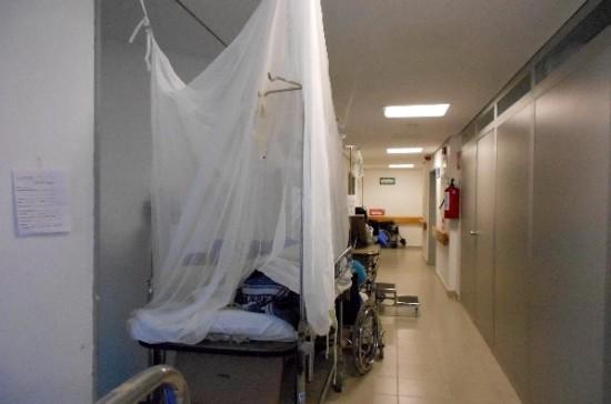 Más de 5 mil enfermos por dengue en Veracruz; señaló Claudia Guerrero.